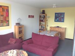 Gezellig, comfortabel en net appartementje met living- 1 slaapkamer - douche -keukentje - toilet - zonnig terras met vergezicht - fietsenstalling - ce