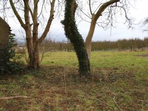 Schitterend gelegen bouwgrond Bunsbeek-Glabbeek Oppervlakte 10,70 are (24-28m diep en 43m breed).  Ligging langs Oplintersesteenweg 26 te Bunsbeek-Gla