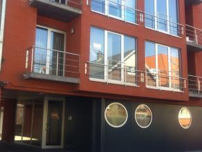 Modern trendy duplex appartement gelegen in het centrum van Erembodegem in een rustige residentiële omgeving. Fiets- en wandelroutes in onmiddellijke