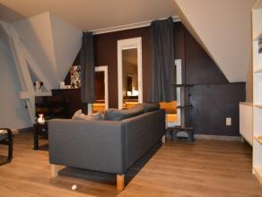 Knus, gerenoveerd, appartement in het centrum met 1 slaapkamer n het centrum van Dendermonde in rustig complex, volledig gerenoveerd appartement, gele