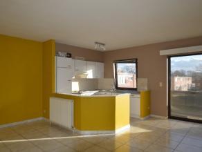 Knus appartement, rustig, centraal gelegen, 2slps Op wandelafstand van het centrum en de Grote Markt, knus, gezellig appartement met zonnig terras. He