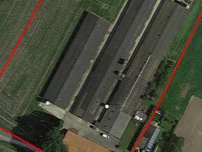 Zeer degelijk zeugen- en afmestbedrijf met woning en schuur te Hoogstraten, dit op een totale oppervlakte van 2,96 ha. Er is plaats voor kleine 500 ze