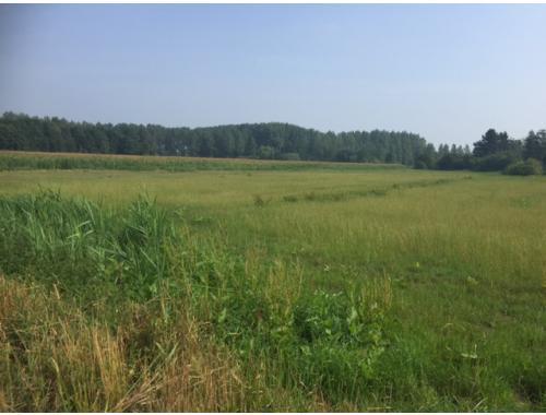 Grond te koop in hamme dmu9j boerenhuys zimmo for Landbouwgrond te koop