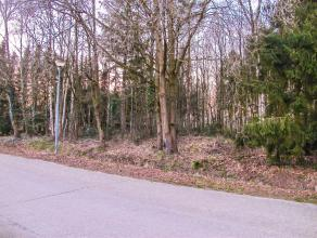Schitterend gelegen villagrond op slechts 5 minuten van de autostrade, E34 oprit 25 Oud-Turnhout. De perfecte configuratie zorgen voor een hele mooie
