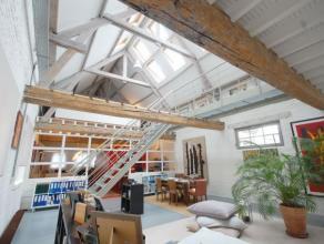 Dans un quartier vivant à proximité de la gare du Nord, rue de potter:  Un des plus exceptionnel Loft de Bruxelles avec 540m² et un