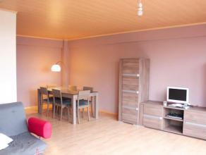 Leuk en lichtrijk appartement onmiddellijk aan Gent centrum. In de omgeving bevinden zich talrijke winkels en bus- en tramhaltes. Het treinstation (Ge