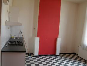 Voordelig appartement (450 euro) dat desalniettemin netjes op orde is. Het beschikt over een woonkamer met open keuken, 1 slaapkamer en een badkamer m