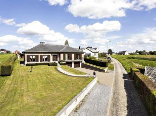 Ruime volledig onderkelderde villa/bungalow met 4 slaapkamersop een perceel van bijna 20 are, gelegen in de groene rand rond Brussel.Bouwjaar 1983 - E