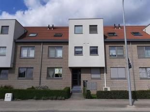 HOESELT<br /> Gezellig appartement op het gelijkvloers in Residentie Amadeus op de stationsstraat 55 in Hoeselt. Dit appartement is ingericht met een