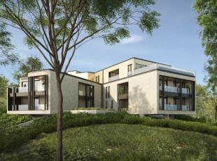 Residentie KESTEMONT past door zijn uitgesproken vorm met vier armen op het perceel tussen de bestaande bomen. Er worden 12 appartementen gebouwd, ver