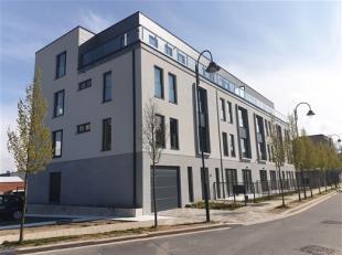 HAREN : OTAN - MIDDLE WAY : une petite copro neuve de 14 apparts. Incroyable penthouse 3ch 156m² + 43m² terrasse. Luxueuses finitions r&eacu