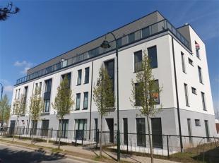 HAREN :  NAVO in een kleine nieuwe mede-eigendom met 14 appartementen. Luxeappartement van 181 m² met 1 sl.k., een grote privétuin en een