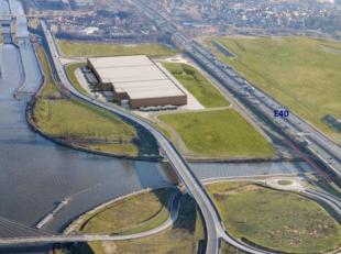 Logistieke ruimte vanaf 10.000 m² tot en met 35.000 m² te huurop een uiterst strategische ligging. Mezzanine en kantoren op maat mogelijk. E