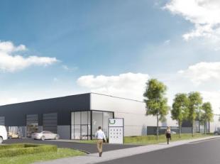 Nouveau unité PME à louer situé à Lier Hauteur libre de 6 m - Porte sectionnelle - béton poli - lumière - sa
