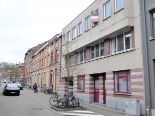Deze gezellige studio bevindt zich in een gezellige, autoluwe straat, vlakbij het park den Bruul, de Dijle-terrassen en is gelegen in het centrum van