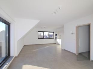 Appartement à louer                     à 9940 Kluizen