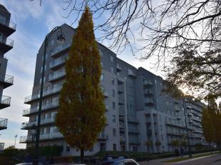 Boulevard Louis Mettewie 62: Studio de 45m² rénové avec une terrasse de 10m². ! Attention: pas de connexions pour lave-linge !