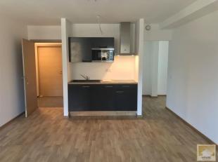 Studio idéalement situé à deux pas du centre-ville de Mons (côté Hyon), 41 m² effectivement habitables. Spacieu