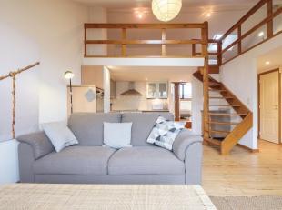 Dicht bij de Place du Chatelain, in een prachtig herenhuis, prachtig appartement / duplex, veel charme en in perfecte staat, grote woonkamer zeer lich