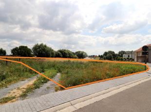 Voor een bezoek of meer info bel 05469.39.34 - In een rustige verkaveling bevindt zich dit perceel bouwgrond voor een open bebouwing op een perceel va