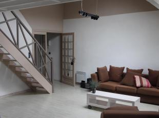 Centrum, op een steenworp van de Nieuwstraat. Lichtrijk appartement met kamer op mezzanine. Samenstelling: Inkomhall, woonkamer met open keuken, dress