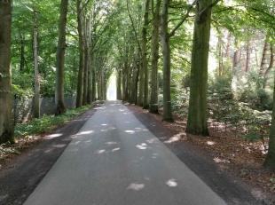 Residentieel gelegen bouwgrond (8.299m²) op een schitterende locatie te Hertsberge. Het enorme perceel beschikt over meer dan 100m langs de zuid-