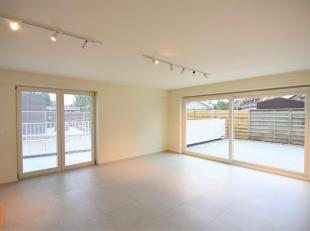 Dit lichtrijk 3-slpk appartement is gelegen op het gelijkvloers van een mooie én recente residentie op de hoek van de Rumbeeksesteenweg en het