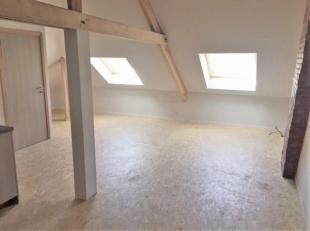 Recent gerenoveerde, rustig gelegen & karaktervolle, gezellige studio bestaande uit: inkomhall, ruime leefruimte met veel lichtinval en slaapplaat