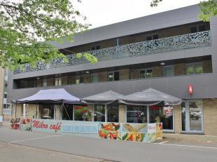 Ruim handelsgelijkvloers (135 m²) mét privé-parking in Hulst nabij Tessenderlo, bestaande uit: Horecazaak met terras. De zaak besch