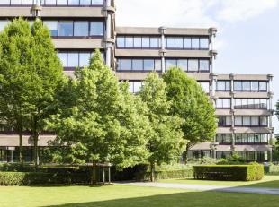- +/- 18.313 m² op 0 + 7 verdiepingen - Groene omgeving - Natuurlijke lichtinval - Volledig gerenoveerd - Een High-standing gebouw - Restaurant,
