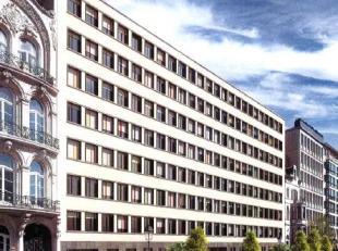 - +/- 7.600 m² kantoorruimte op 0 + 8 verdiepingen - Het gebouw en de onmiddellijke omgeving ervan werden volledig gerenoveerd - Omvat achteraan