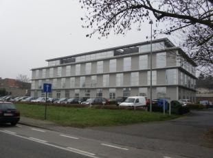 Bedrijfsvastgoed te huur                     in 8200 Sint-Andries