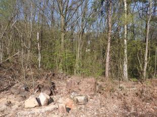 Beau terrain à bâtir de +/- 15 ares 50ca dans le quartier du Bois-du-Val, à Wavre. Localisation idéale, à proximit&e