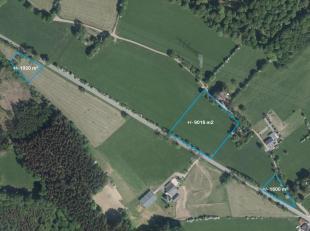 Werbomont - Ensemble de ± 1,2ha de terres agricoles. Idéalement situé avec accès aisé, cet ensemble est constitu&ea