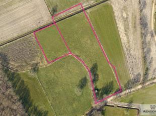 Het onroerend goed<br /> Deze te koop aangeboden percelen grond hebben samen een oppervlakte van ongeveer 9895 m².<br /> Ze zijn gelegen in een n