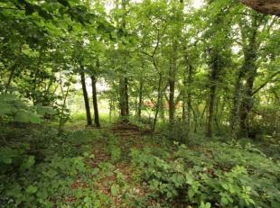 Trust a le plaisir de vous présenter ce magnifique terrain situé dans la commune de Wavre. Avec une largeur à rue de 25 mè