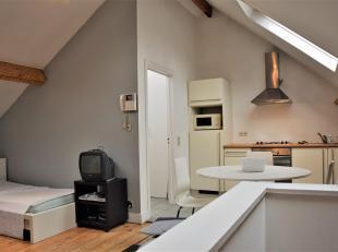 Quartier européen  Rue Stevin 65 à 1000 Bruxelles: Dans une maison divisée, lumineux studio composé dun living, dun coin &