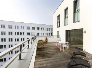 Bel appartement 1 chambre avec grande terrasse!