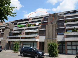 Appartement à vendre                     à 3971 Heppen