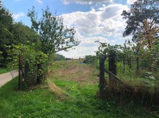 Een perceel landbouwgrond, gelegen te Webbekom , ter plaatse genaamd 'Wijngaardveld', met een oppervlakte van 279 ca. <br /> <br /> Kersen-, appel-, p