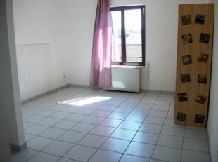 LLN, plein centre, studio de 30m² comprenant hall d'entrée, pièce principale, coin cuisine et salle de douche avec WC.
