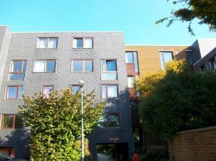 Bel appartement duplex dans quartier des Sciences comprenant living, cuisine équipée, 4 chambres, sdb, 2 wc plus car port.Loué ju