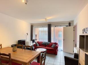 LLN, Centre-Ville, bel appartement comprenant hall dentrée, living avec terrasse et cuisine équipée, salle de douche, WC, 1 chamb