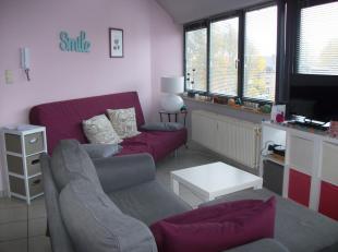 LLN, quartier de Lauzelle, bel appartement duplex comprenant living avec balcon, coin cuisine équipée, une chambre, salle de bains avec