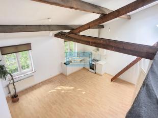 Appartement te huur                     in 1190 Vorst