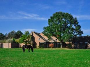Au grand calme, dans un cadre champêtre, nous vous présentons une MAGNIFIQUE PROPRIETE AU STYLE CONTEMPORAIN (+/- 600 m² bâtis
