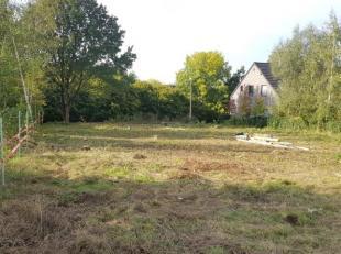 JODOIGNE-Beau terrain de 10ares 08ca , surélevé par rapport à la route en zone d'habitat pour la construction d'une villa 4 fa&cc