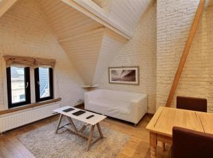 Saint-Gilles - Hôtel des Monnaies : Charmant appartement 1 chambre meublé! Situé au dernier étage d'une maison de maî