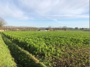 Superbe terrain de plus de 2 Ha 69 ca situé à l'entrée de Braine-le-Comte. Une partie est située en zone à bâ