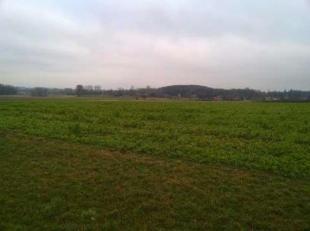 Terrain à vendre                     à 3380 Bunsbeek